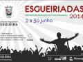 020 - Esgueiriadas 2014